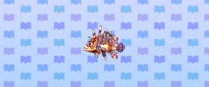 File:Turkeyfish.JPG