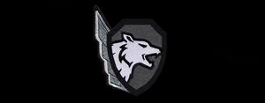 AoA Logo Belyie Volki