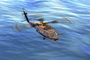 HT Ingame Seahawk USA