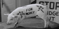 Pugsley's Piggy Bank