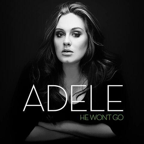 File:Adele - He Won't Go Lyrics.jpg