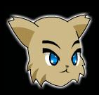 Cat Morph