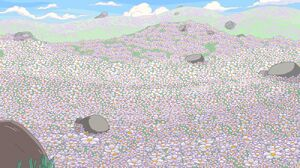1000px-Marshmallowfield