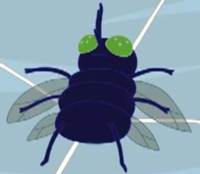 200px-Fly Web Weirdos