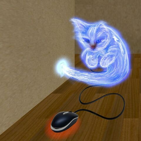 File:Lightning cat by animefreak40k-d2z8fur.jpg