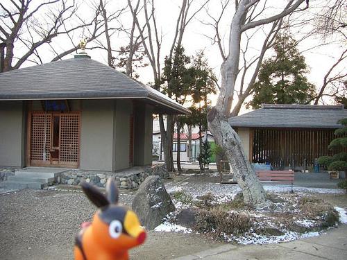File:Tepig in Koriyama, Fukushima 23 (Nyohoji Temple).jpg