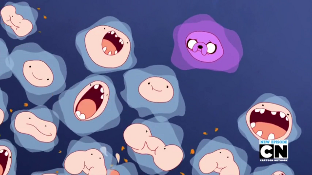 File:S6 E7 bacteria.png