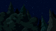 S7e10 forest and trees