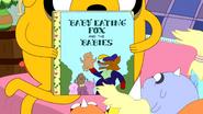 S5e6 Baby book