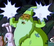 Forestwizard