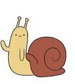 Snail -D