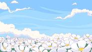 Marshflowers