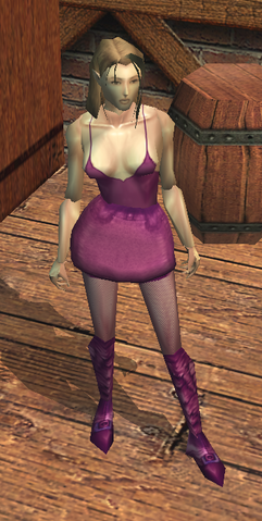 File:Hooker's Outfit view.png