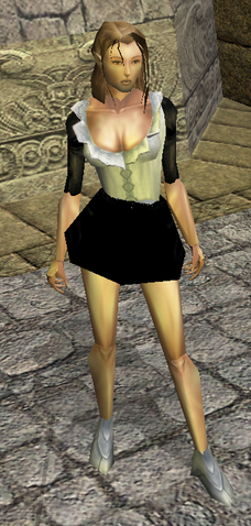 File:Maid's Clothes view.png