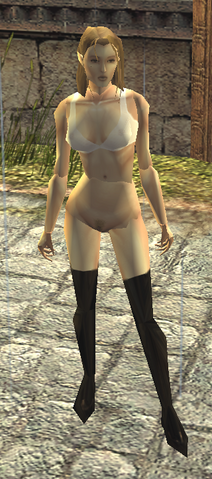 File:White Bra and Boots view.png