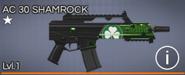 AC 30 Shamrock 1 star