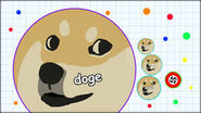 Agar Io Cell Doge