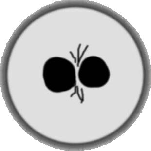 File:Split Button Agar.io Mobile Browser.png