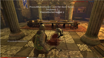 Chivalry duel win