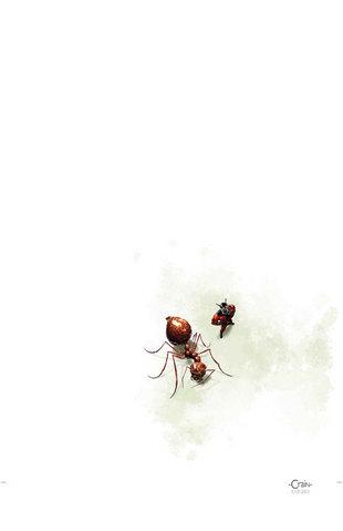 File:Ant man (6).jpg