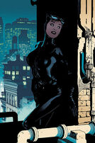 86814-169917-catwoman