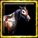 Comanche Horse Breeding