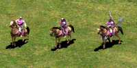 Light Cavalry (Age of Empires II)