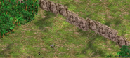 Jungle Lanes (3)