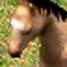Horse-icon-aoe2.jpg