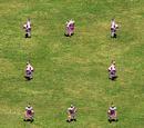 Huskarl (Age of Empires II)