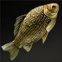 File:Golden-Line Barbel.png
