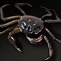 Hairy Crab.png