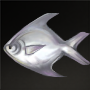 Butterfish.png