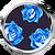 N4v4 lily01 r tx s 01