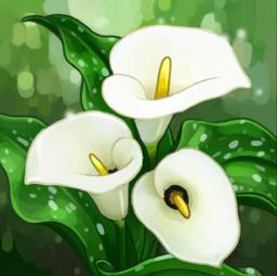 Lily Bouquet Crop