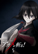 Akame ga Kill Vol. 5 Blu-ray (Japan)