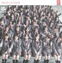 Sakura no Hanabiratachi 2008 Limited A