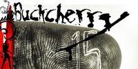 15 (Buckcherry album)