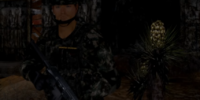 Sergeant Sharkteeth