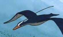 Blue-floater