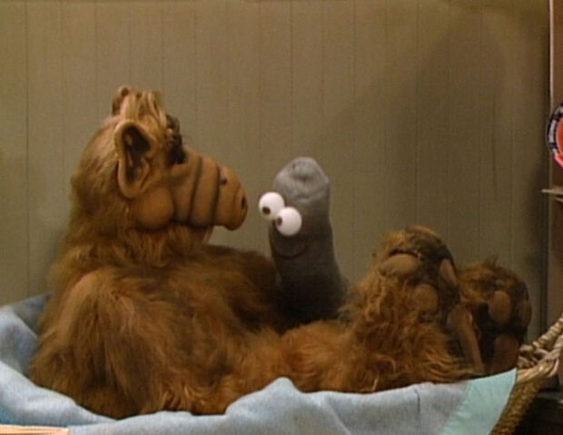 File:776px-Alf-Episode-005.jpg