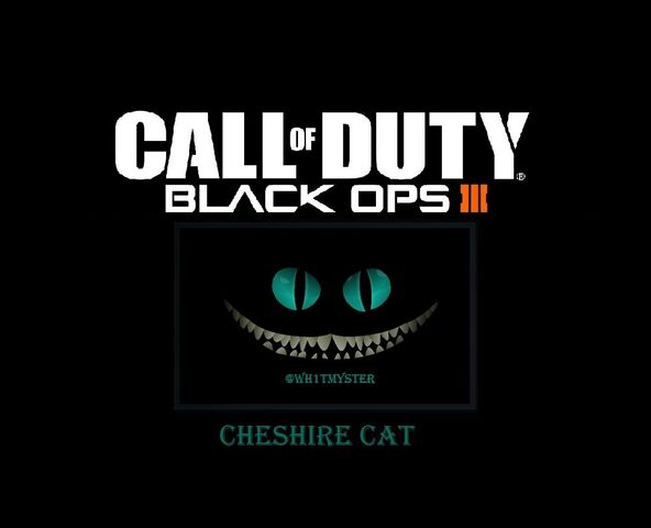 File:Call of duty cat.jpg