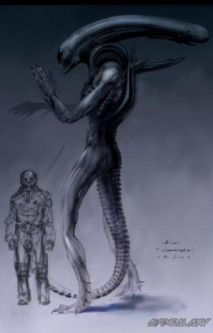 File:Ultramorph-Engineer height 1.png