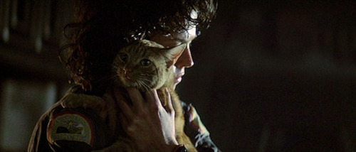 File:Ripley and Jonesy.jpg