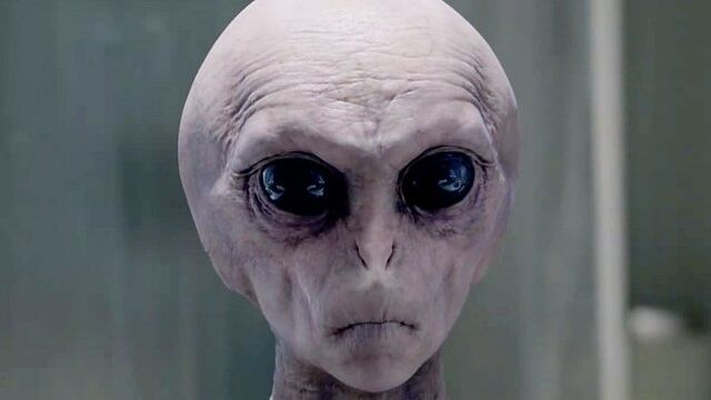 File:The-x-files-finale-scully-s-connection-to-aliens.jpg