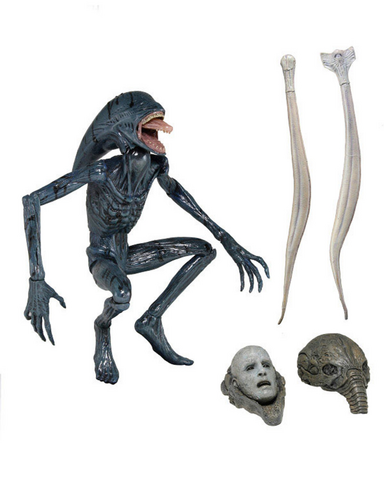 File:Deacon NECA.png