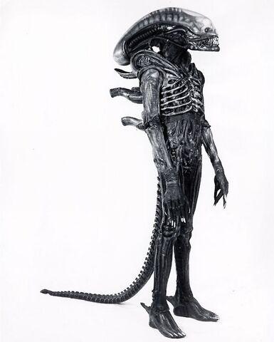 File:Aliencostumeearlydesign.jpg