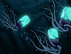 Cyber Squids