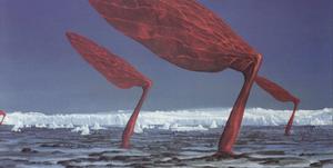 Actic Polar-vane