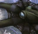 Arboreal Octopus